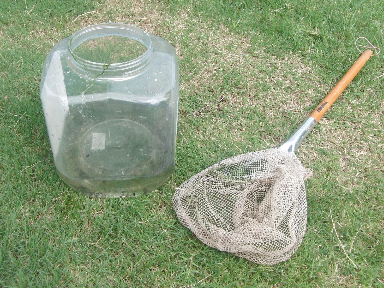 Kid s fishing net having fun in the texas sun for Kids fishing nets