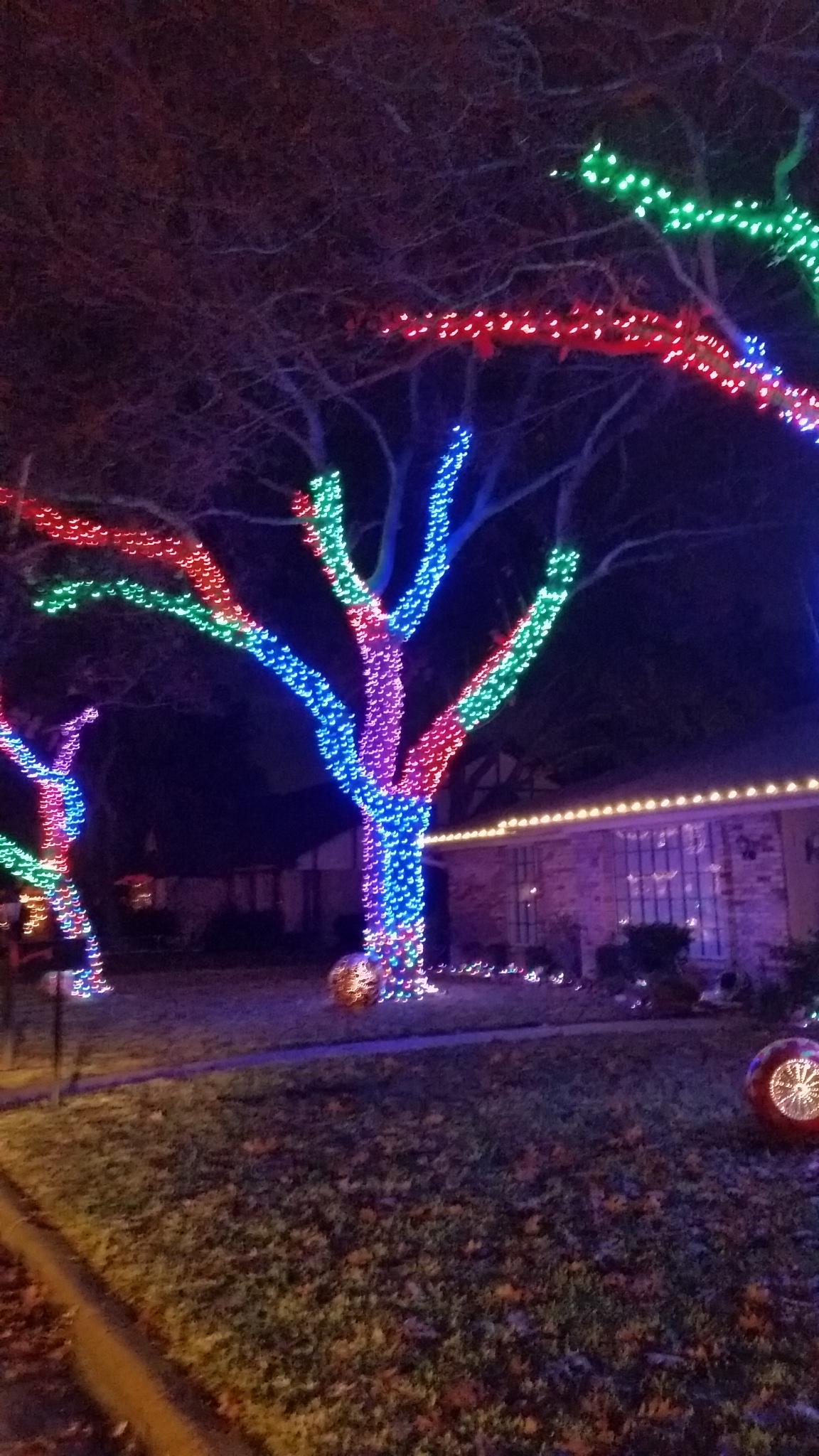 20141213_211038 - Arlington Christmas Lights