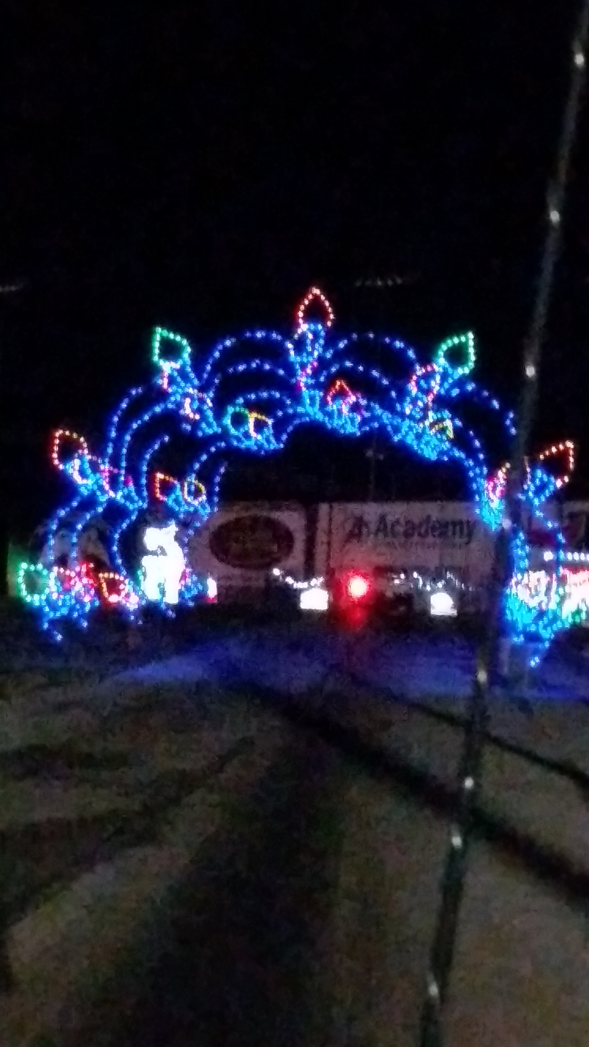 Gift of Lights at Texas Motor Speedway, Fort Worth | Having Fun in ...