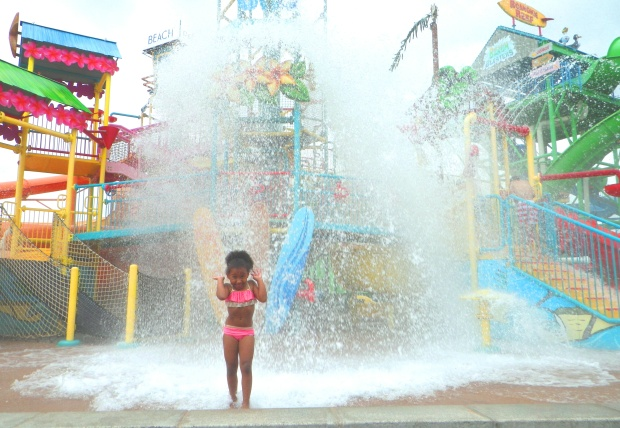 Hawaiian Falls Waterpark Roanoke