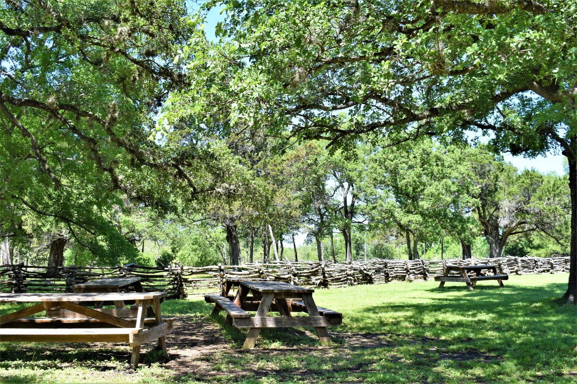 The Salt Lick BBQ picnic grounds in Driftwood Texas