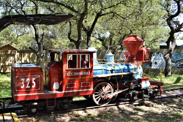 Miniature Train ride at the Austin Zoo