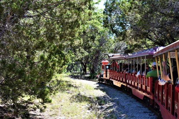Miniature Train ride at the Austin Zoo
