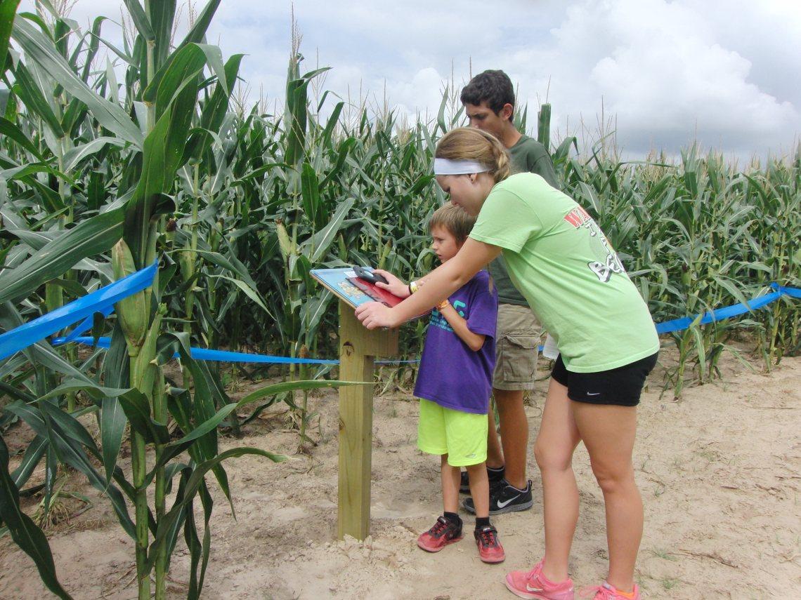 Lone star family farm