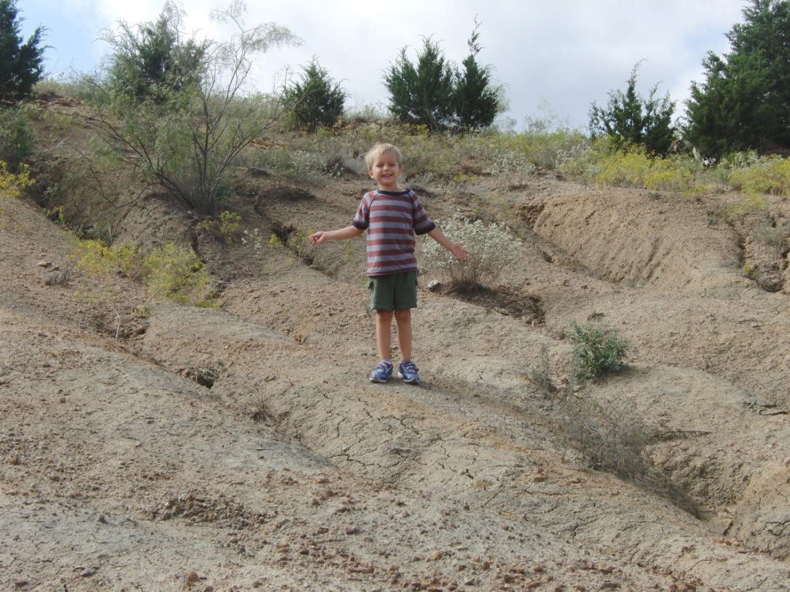mineral wells fossil park 2