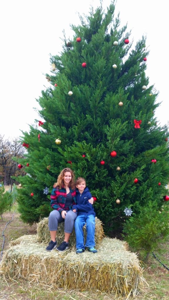 4D Christmas Tree Farm