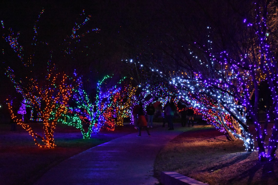 Vitruvian Lights Christmas Display in Addison