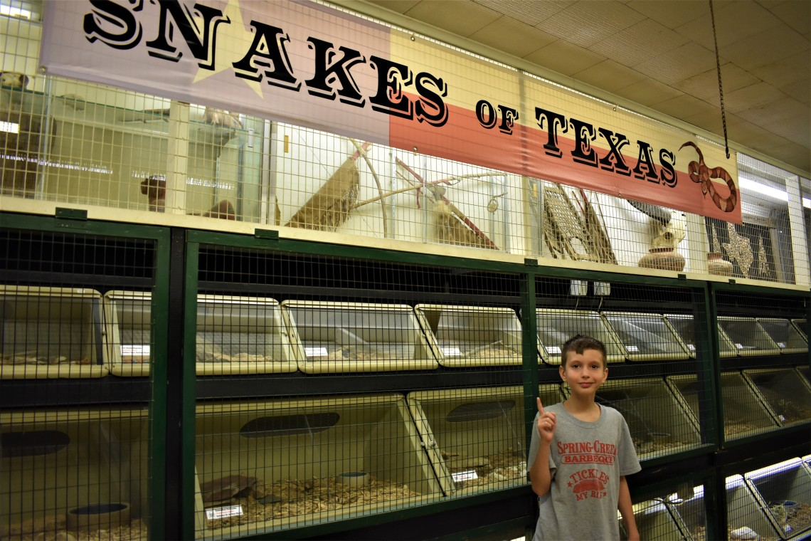 Animal World and Snake Farm, New Braunfels