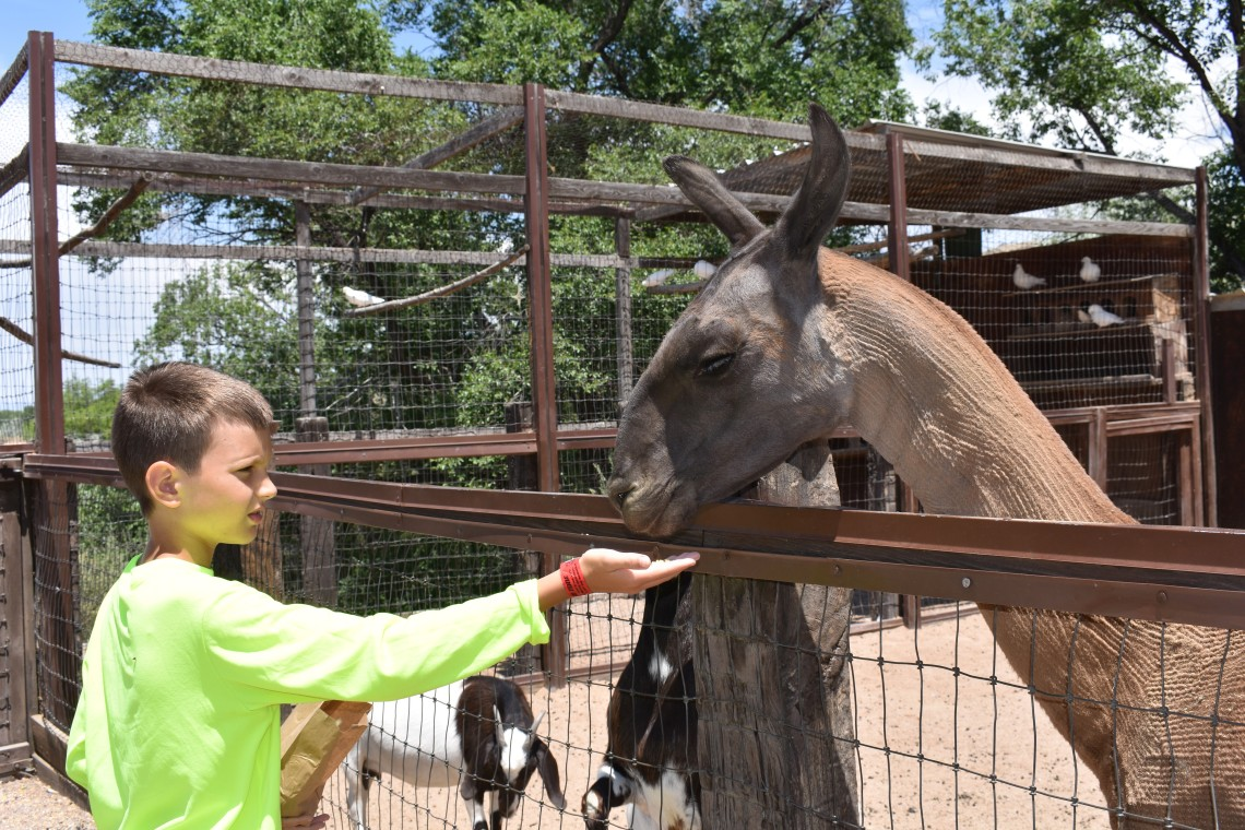 Casa Grande Trading Post and Petting Zoo Cerrillos New Mexico