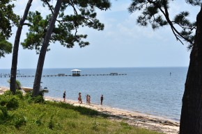 Beach along Mobile Bay