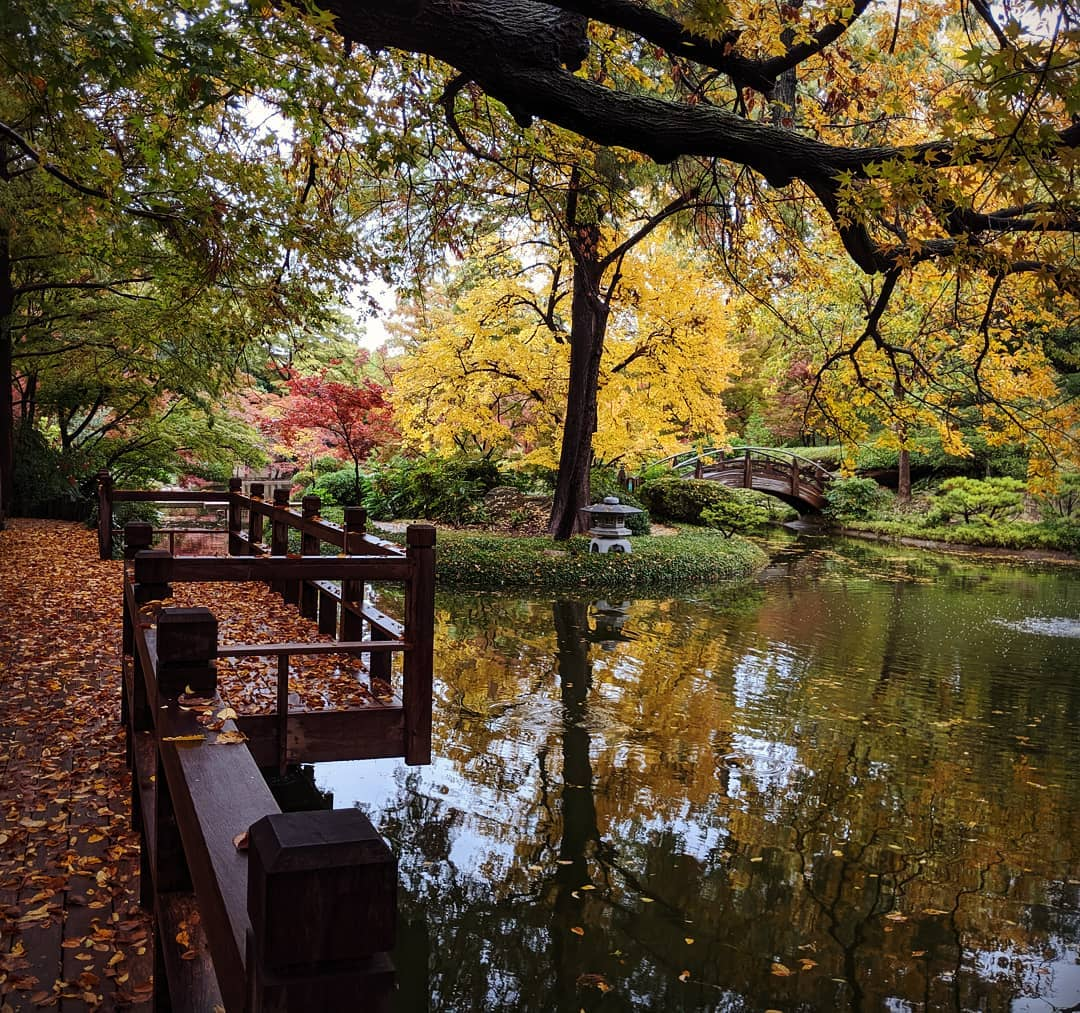 Fall festival at the FW Botanic Gardens